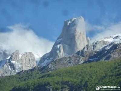 Ruta Cares-Picos de Europa; ocejon juniperus thurifera puente poncebos viajazo